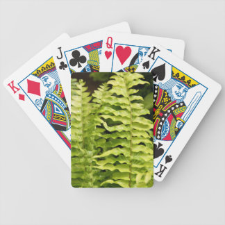 Playing Cards - Tiger Fern