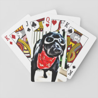 Playing cards with BlackDogLuke in goggles