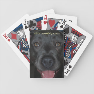 Playing for the Bully's Playing Cards