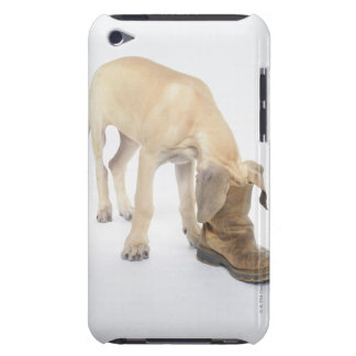 playing,friendly,curiosity barely there iPod cover