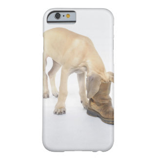 playing friendly curiosity iPhone 6 case