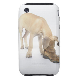 playing,friendly,curiosity tough iPhone 3 case