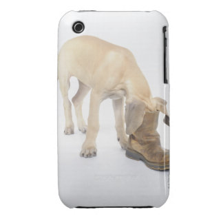 playing,friendly,curiosity iPhone 3 Case-Mate cases