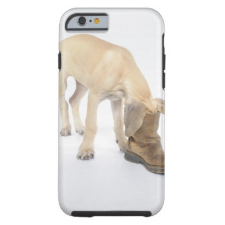 playing,friendly,curiosity tough iPhone 6 case