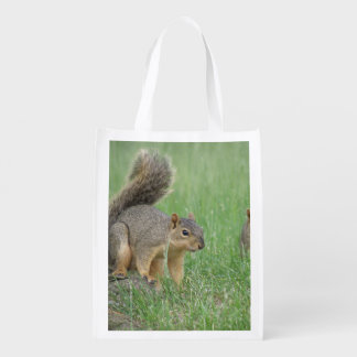 Playing Squirrels Grocery Bags