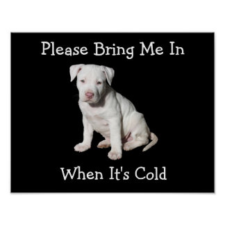 Please Bring Me In, When It's Cold Canine Poster