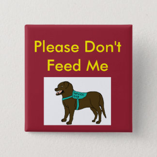 Please Dont Feed Me SD 15 Cm Square Badge