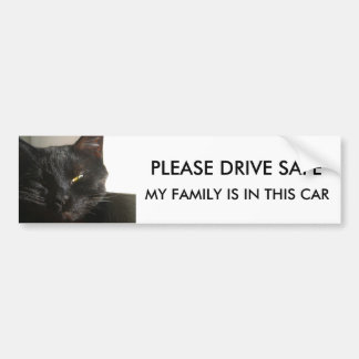 PLEASE DRIVE SAFE , MY FAMILY IS IN THIS CAR BUMPER STICKER