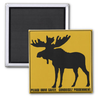 Please Drive Safely,  Traffic Sign, Canada Square Magnet
