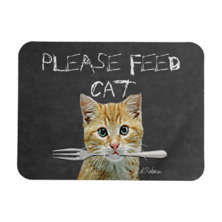 Please Feed Cat Magnet