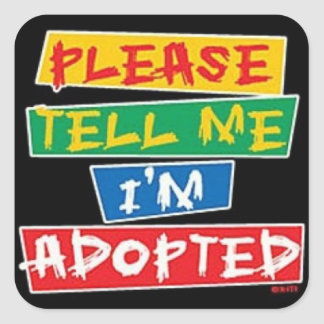 Please tell me im adopted square sticker