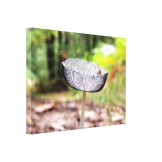 Pleated Inkcap Mushroom Canvas Print