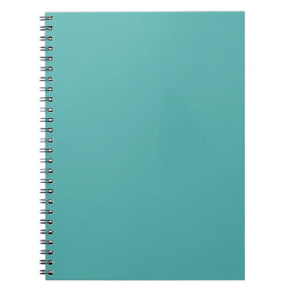 Plentifully Wealthy Turquoise Blue Color Notebooks
