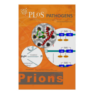PLoS Pathogens Prions Poster