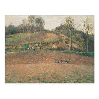 Ploughland, 1874 postcard