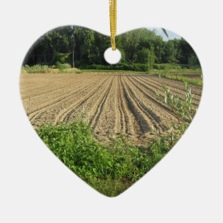 Plowed field in the late afternoon in Tuscany Ceramic Heart Decoration