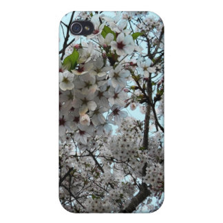 Plum Blossom Art Cover For iPhone 4
