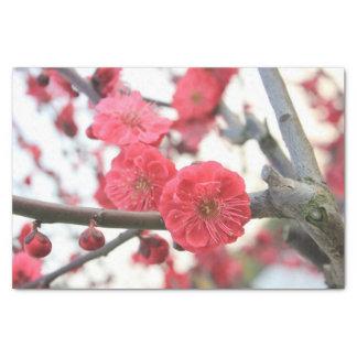 plum blossom spring pink flowers tissue paper