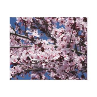 Plum Blossoms Stretched Canvas Prints