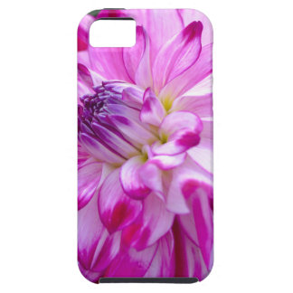 Plum Flora iPhone 5 Cases