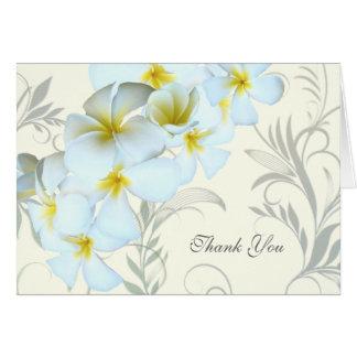 Plumeria Flourish Blank Thank You Cards
