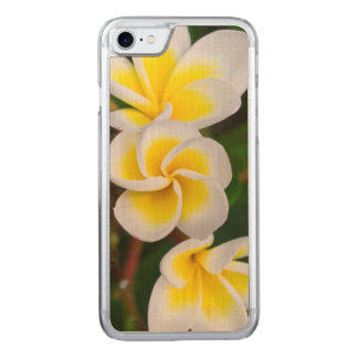 Plumeria flowers close-up, Hawaii Carved iPhone 7 Case