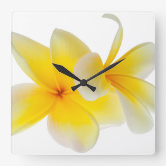 Plumeria Flowers Hawaiian White Yellow Frangipani Square Wall Clock
