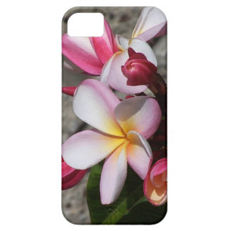 Plumeria Flowers iPhone 5 Case