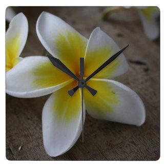 Plumeria - Frangipani Floral Photograph Wallclock