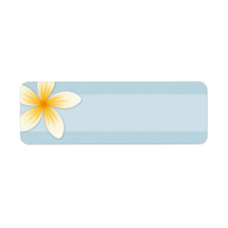 Plumeria Frangipani flower on pale sky blue blank Return Address Label