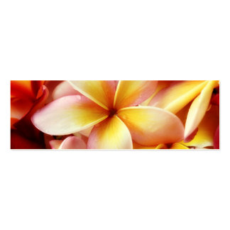 Plumeria Frangipani Hawaii Flower Customized Blank Double-Sided Mini Business Cards (Pack Of 20)