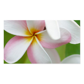 Plumeria Frangipani Hawaii Flower Customized Blank Double-Sided Standard Business Cards (Pack Of 100)