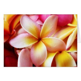 Plumeria Frangipani Hawaii Flower Customized Blank Card