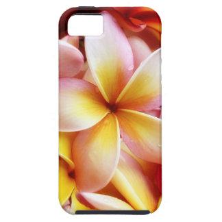 Plumeria Frangipani Hawaii Flower Customized Blank iPhone 5 Cases
