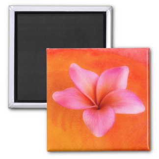 Plumeria Frangipani Hawaii Flower Customized Blank Magnet