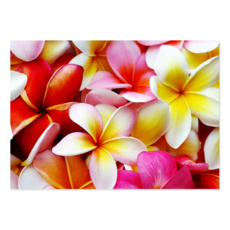 Plumeria Frangipani Hawaii Flower Customized Large Business Cards (Pack Of 100)