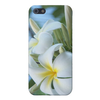 Plumeria iPhone 5/5S Covers