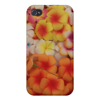 Plumeria IPhone Case iPhone 4 Cover