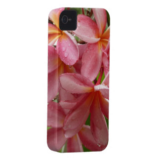 Plumeria on Phone Case