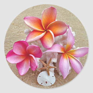 Plumeria on Shells on Beach Round Sticker