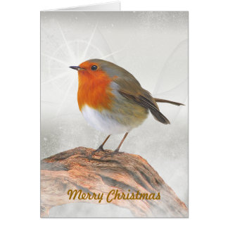 Plump Robin Redbreast Greeting Card
