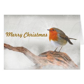 Plump Robin Redbreast Card