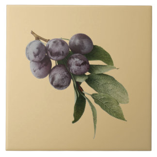 Plums Botanical~Kitchen ~Pick Any Color Background Tile