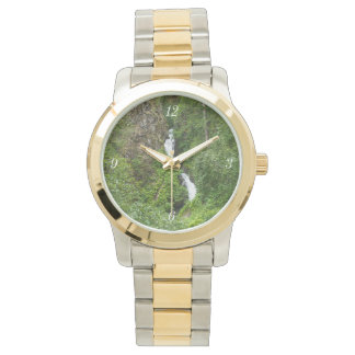 Plush Thunderbird Painterly Wrist Watches