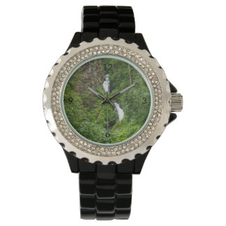 Plush Thunderbird Painterly Wristwatch