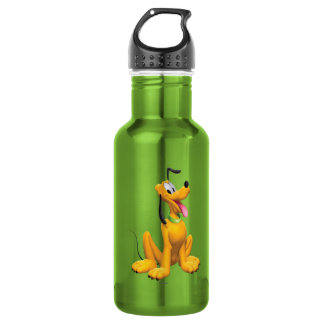 Pluto | Cartoon Side 532 Ml Water Bottle