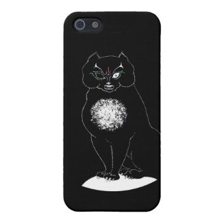Poe Cat iPhone 5/5S Cases