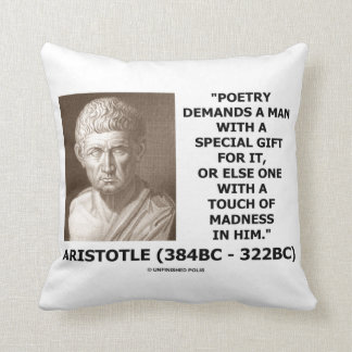 Poetry Gift Touch Of Madness Aristotle Quote Throw Pillow
