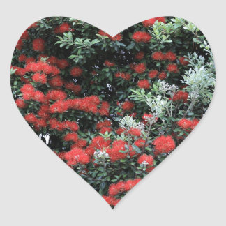 Pohutukawa tree New Zealand red flowers Heart Sticker