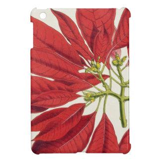Poinsettia Pulcherrima (colour litho) iPad Mini Case